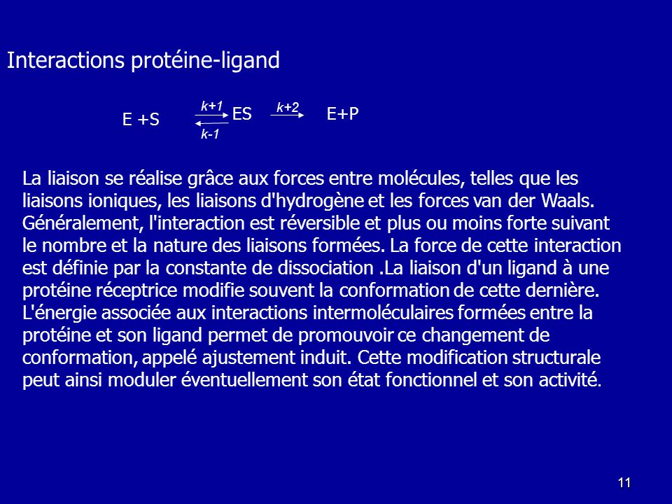 Interactions protéine-ligand