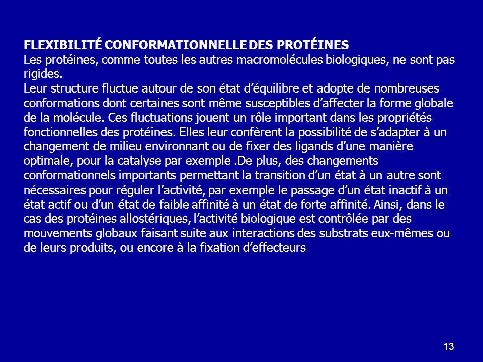 FLEXIBILITÉ CONFORMATIONNELLE DES PROTÉINES