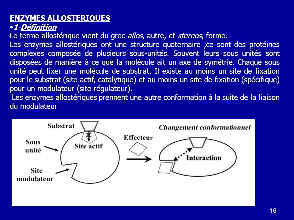 ENZYMES ALLOSTERIQUES