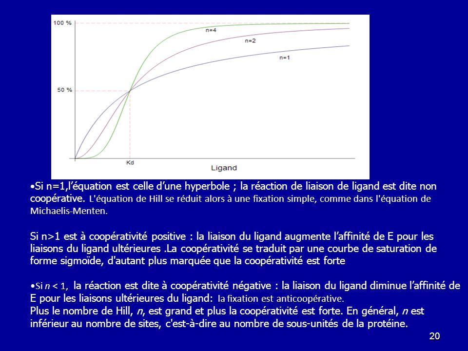 Si n=1,l'équation est celle d'une hyperbole ; la réaction de liaison de ligand est dite non coopérative. L équation de Hill se réduit alors à une fixation simple, comme dans l équation de Michaelis-Menten.