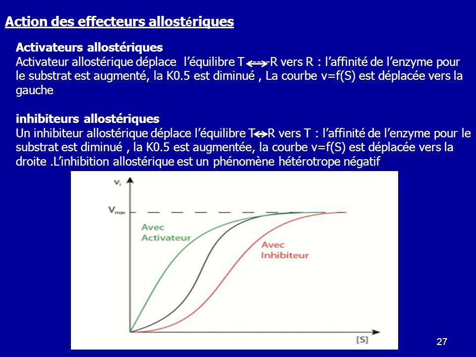 Action des effecteurs allostériques
