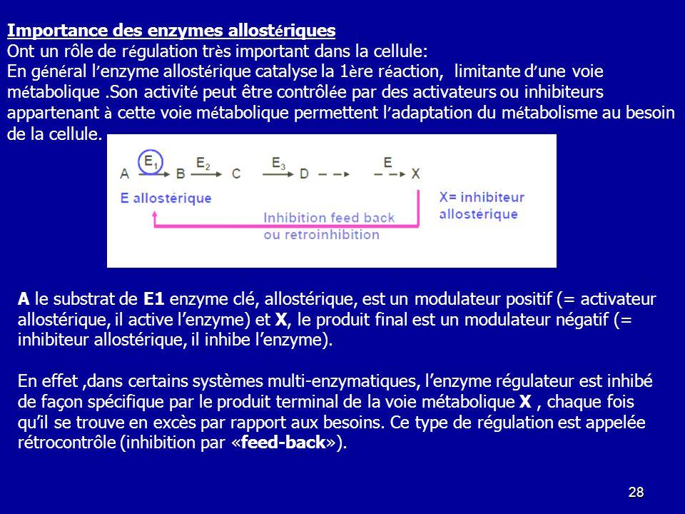 Importance des enzymes allostériques