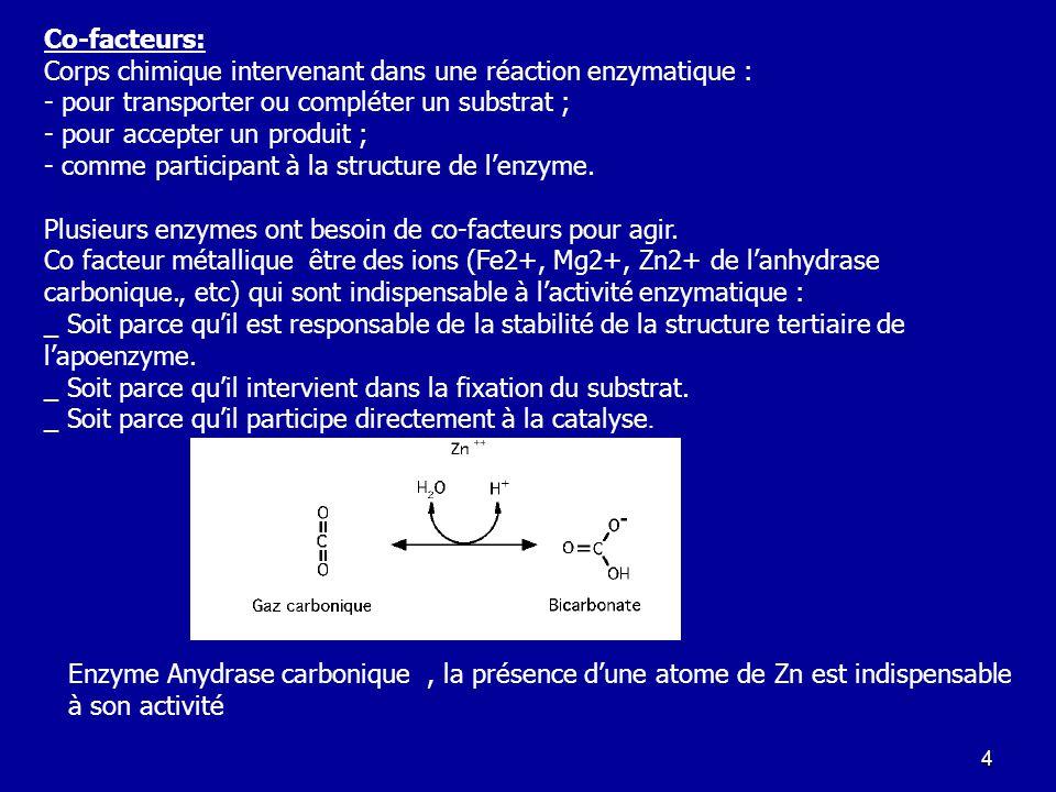 Co-facteurs: Corps chimique intervenant dans une réaction enzymatique : - pour transporter ou compléter un substrat ;