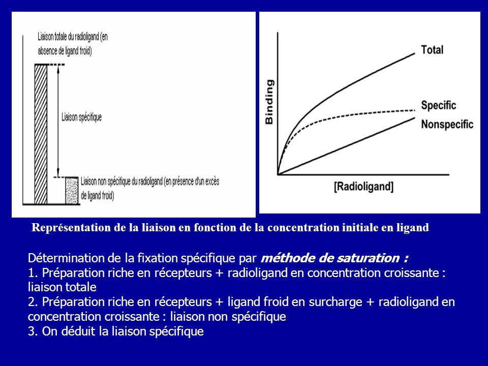 Représentation de la liaison en fonction de la concentration initiale en ligand