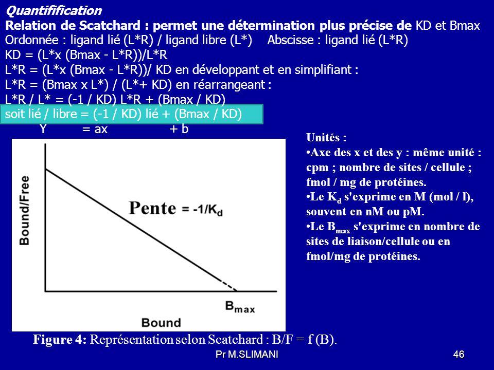 Figure 4: Représentation selon Scatchard : B/F = f (B).