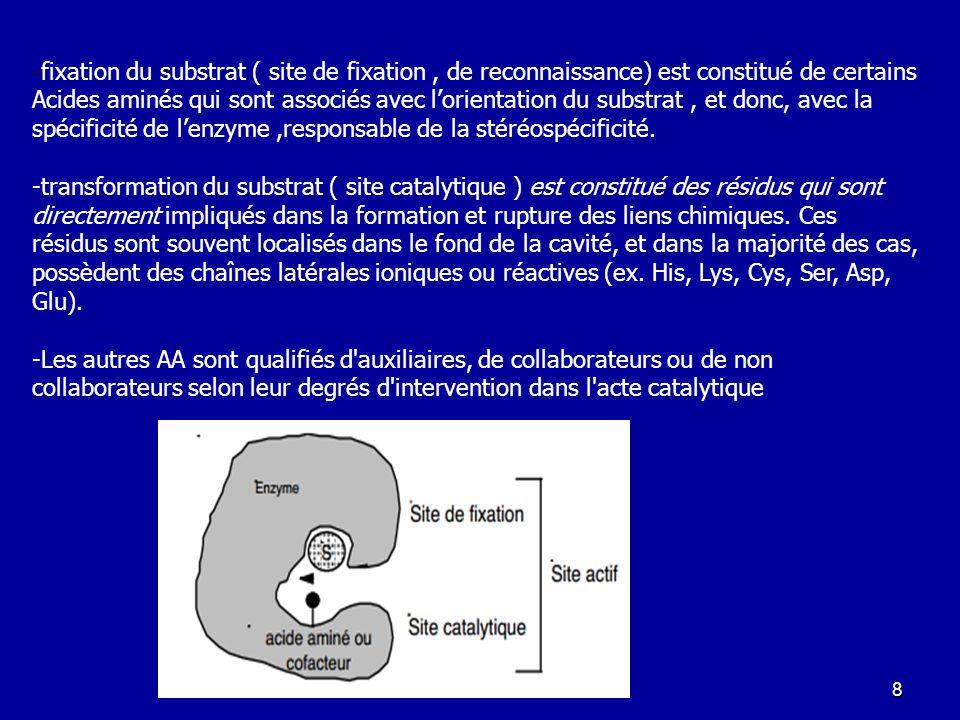 -fixation du substrat ( site de fixation , de reconnaissance) est constitué de certains Acides aminés qui sont associés avec l'orientation du substrat , et donc, avec la spécificité de l'enzyme ,responsable de la stéréospécificité.