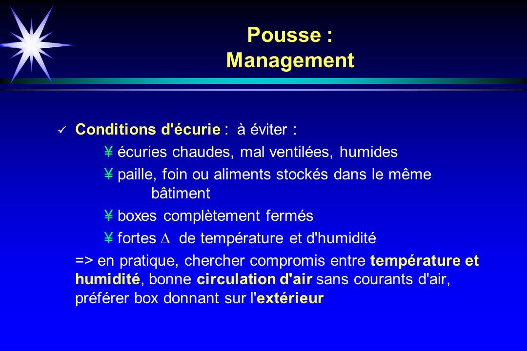 Pousse : Management Conditions d écurie : à éviter :