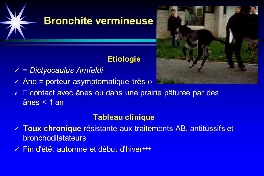 Bronchite vermineuse Etiologie = Dictyocaulus Arnfeldi