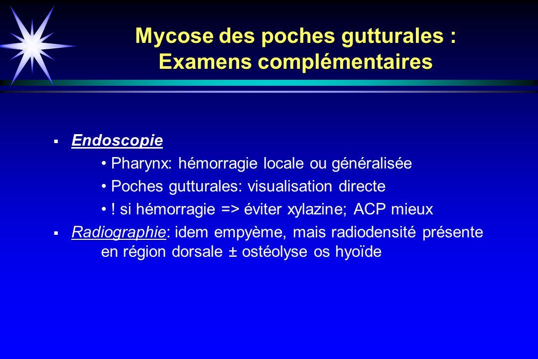 Mycose des poches gutturales : Examens complémentaires