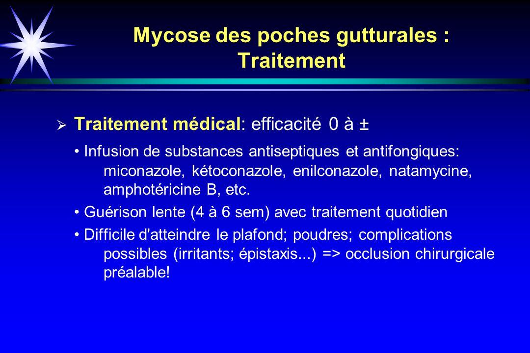 Mycose des poches gutturales : Traitement