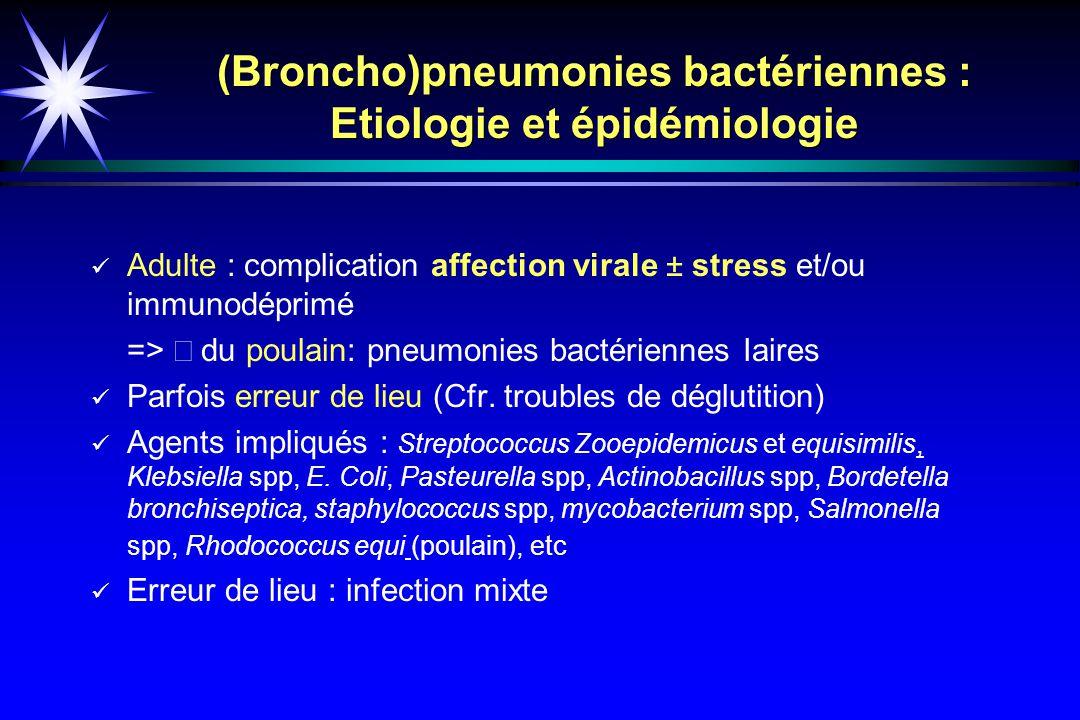 (Broncho)pneumonies bactériennes : Etiologie et épidémiologie