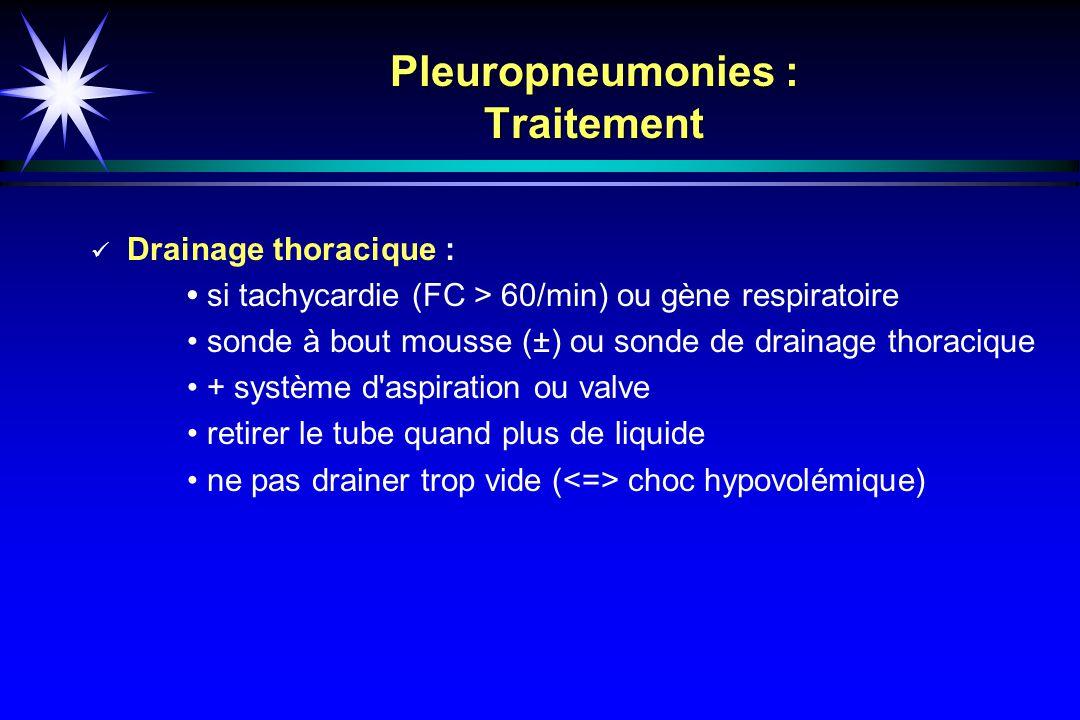 Pleuropneumonies : Traitement