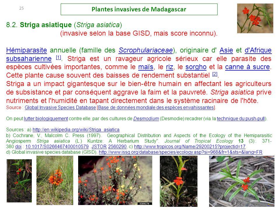 Les plantes invasives madagascar ppt t l charger - Plante contre l humidite dans la maison ...