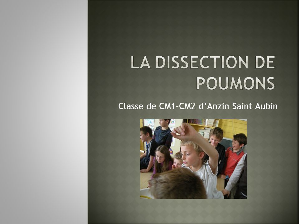 La dissection de Poumons