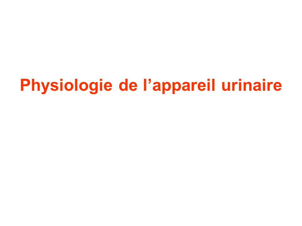 Physiologie de l'appareil urinaire