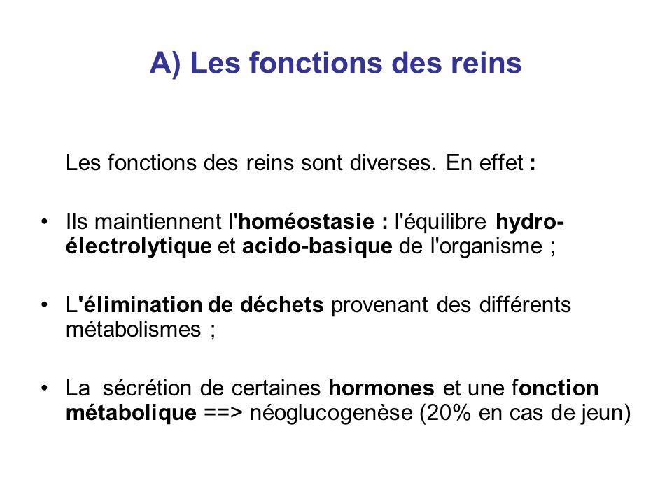 A) Les fonctions des reins