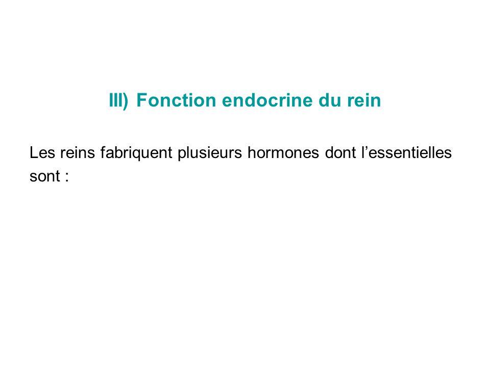 III) Fonction endocrine du rein