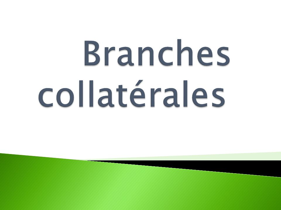 Branches collatérales