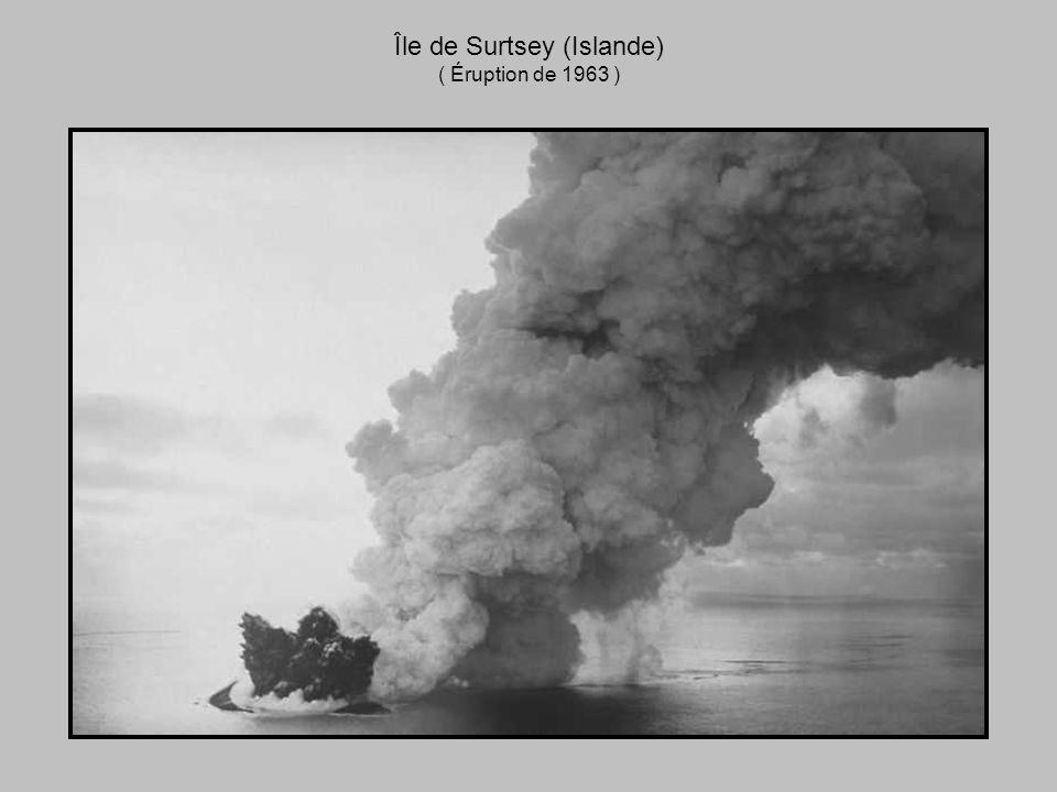 Île de Surtsey (Islande)