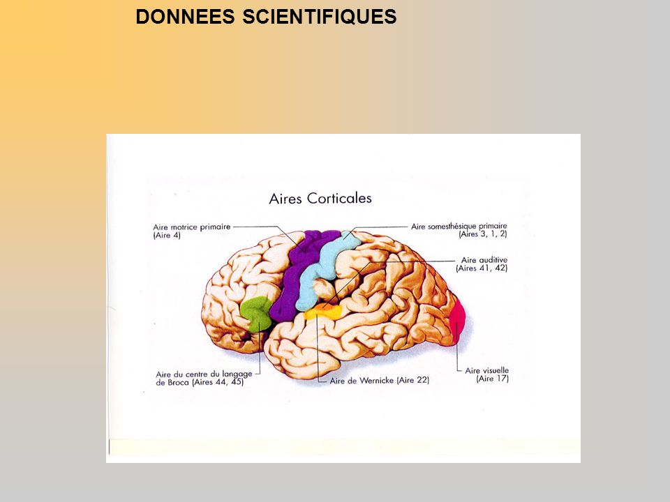 DONNEES SCIENTIFIQUES