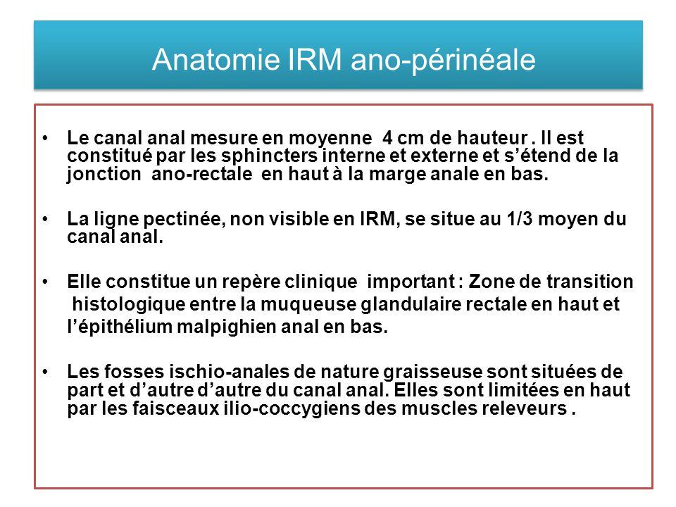 Anatomie IRM ano-périnéale