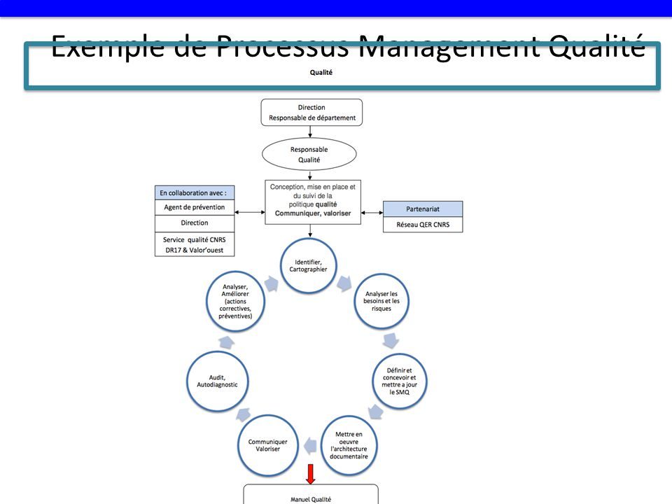 Exemple de Processus Management Qualité