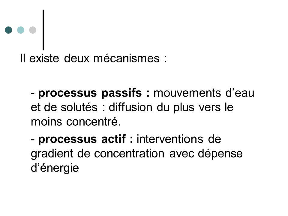 Il existe deux mécanismes :