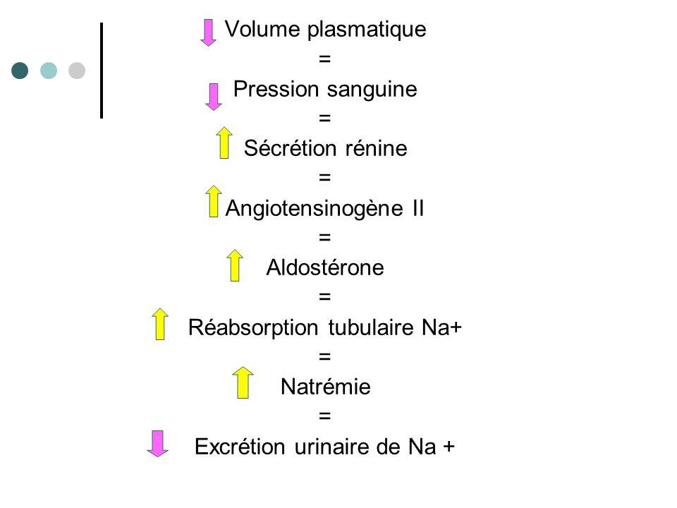 Réabsorption tubulaire Na+ Natrémie Excrétion urinaire de Na +