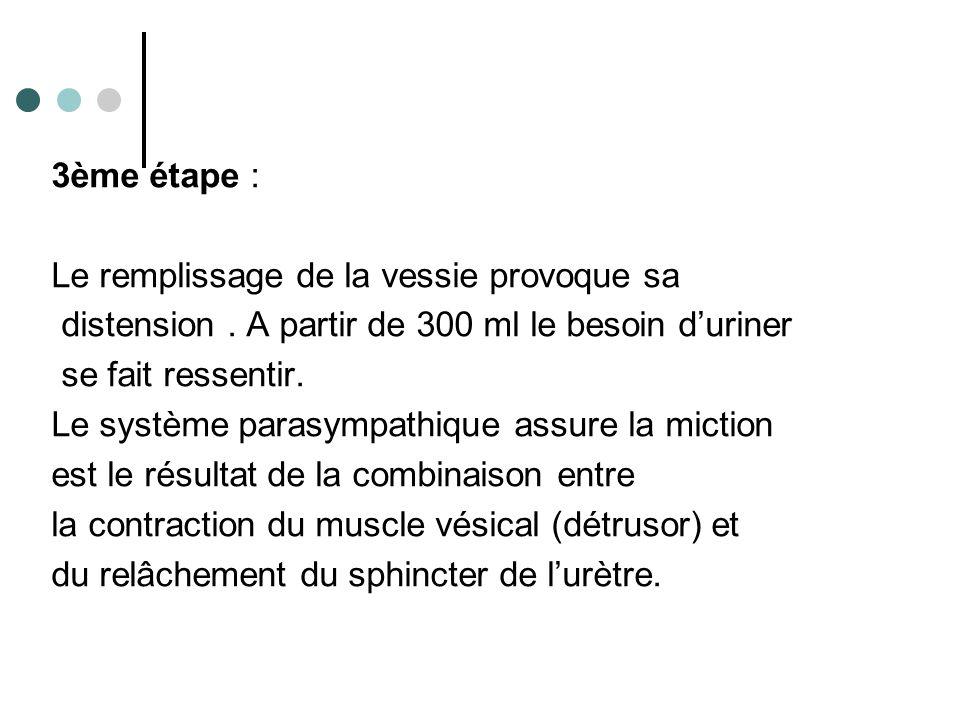 3ème étape : Le remplissage de la vessie provoque sa. distension . A partir de 300 ml le besoin d'uriner.