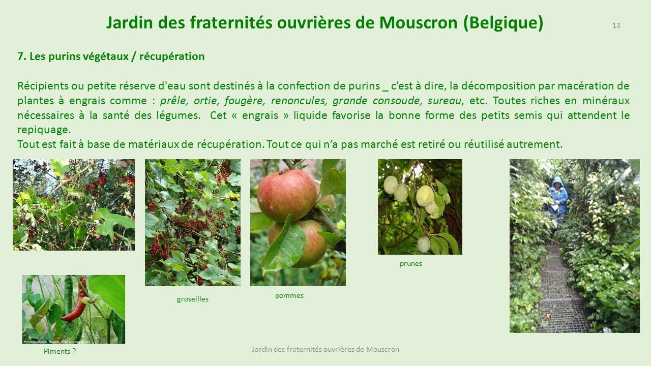 Best Cloture Jardin Mouscron Images - Matkin.info - matkin.info