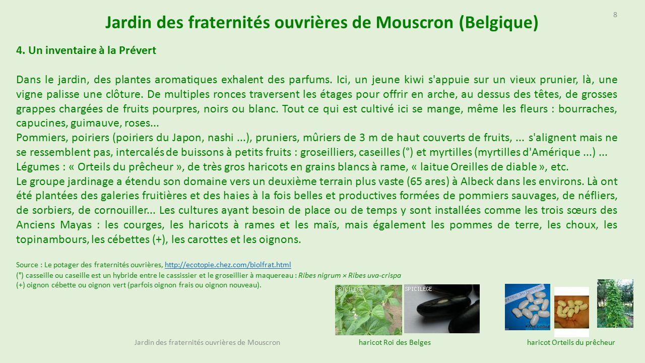 Jardin des fraternités ouvrières de Mouscron (Belgique) - ppt ...