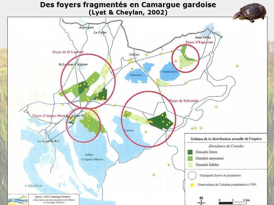 Des foyers fragmentés en Camargue gardoise (Lyet & Cheylan, 2002)