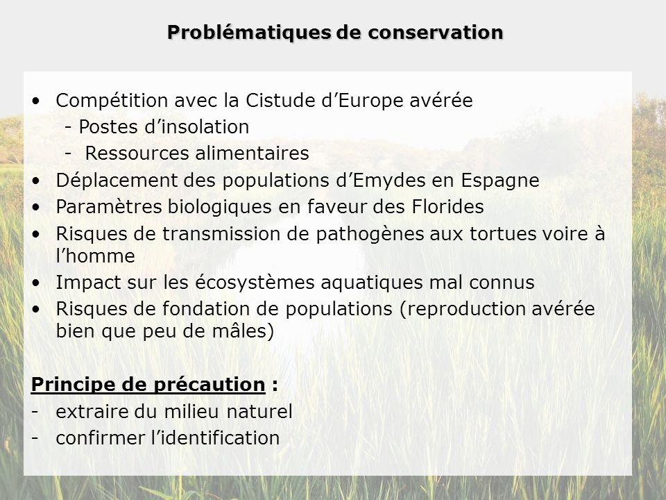 Problématiques de conservation