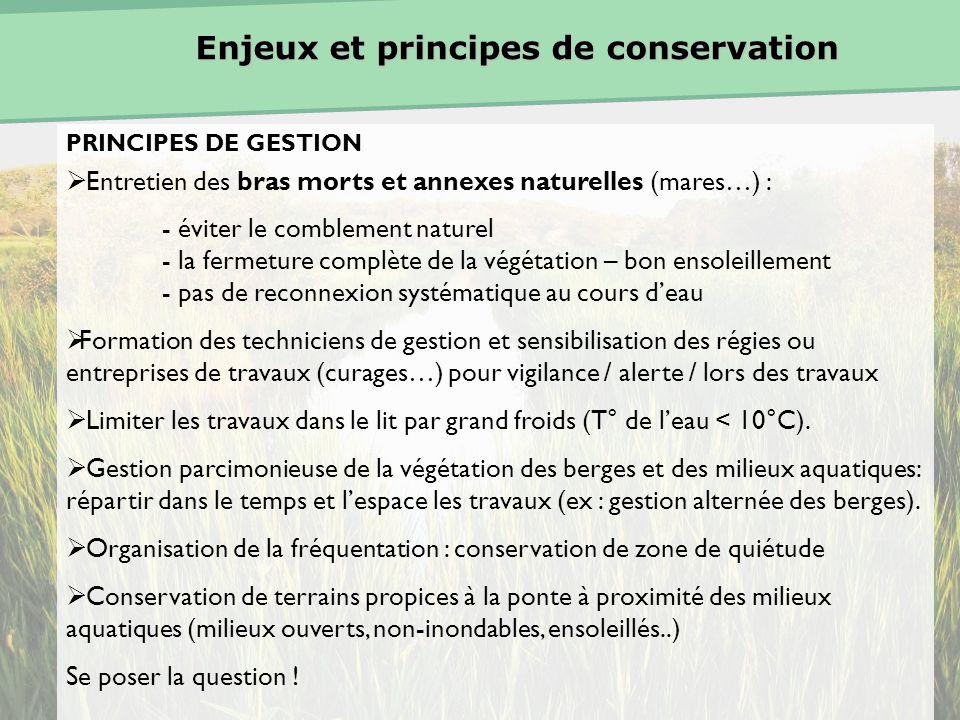 Enjeux et principes de conservation