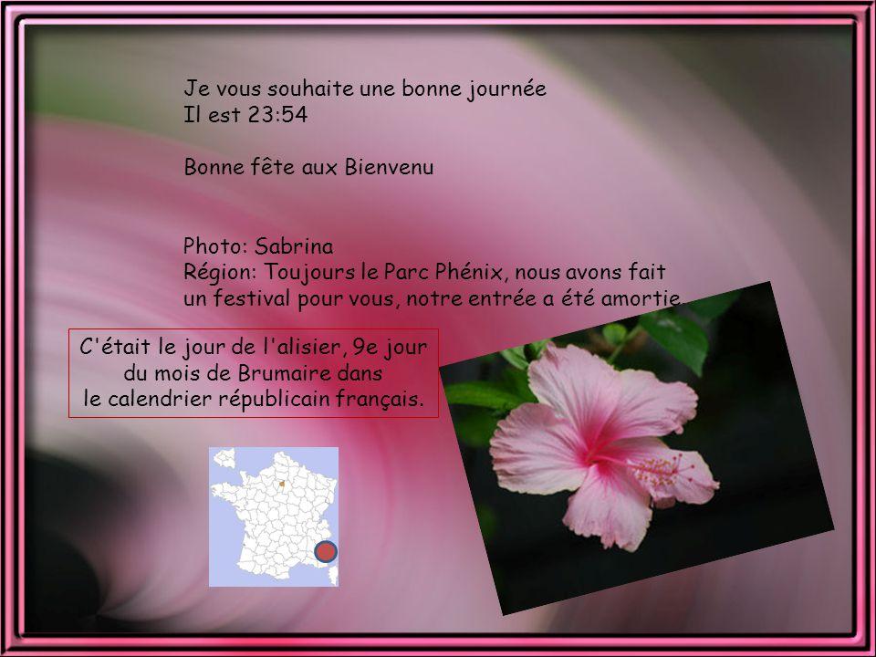 une bonne présentation sur un site de rencontre Champigny-sur-Marne