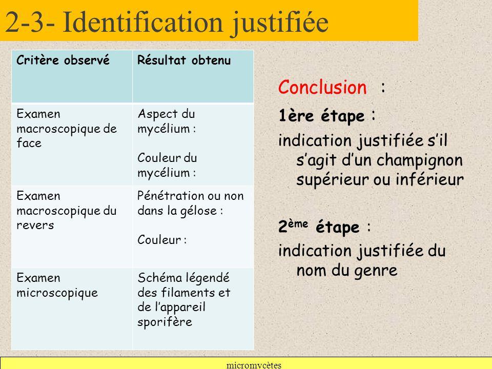 2-3- Identification justifiée