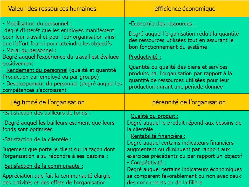 Audit des organisa tions entreprises et territoires ppt t l charger - Grille d evaluation d un employe ...