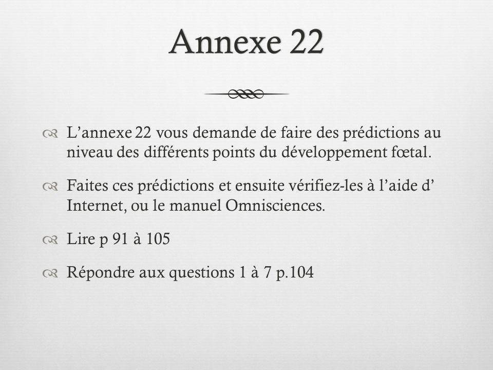 Annexe 22 L'annexe 22 vous demande de faire des prédictions au niveau des différents points du développement fœtal.