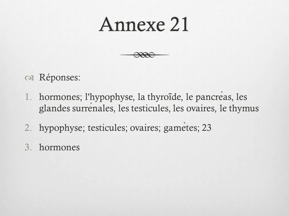 Annexe 21 Réponses: hormones; l hypophyse, la thyroïde, le pancréas, les glandes surrénales, les testicules, les ovaires, le thymus.