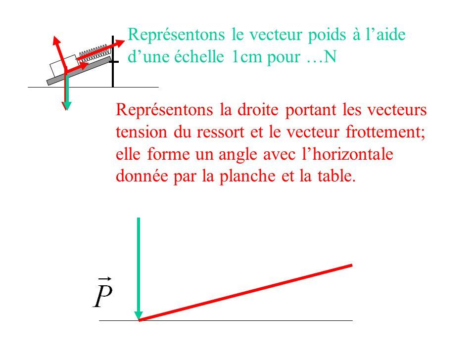 Représentons le vecteur poids à l'aide d'une échelle 1cm pour …N