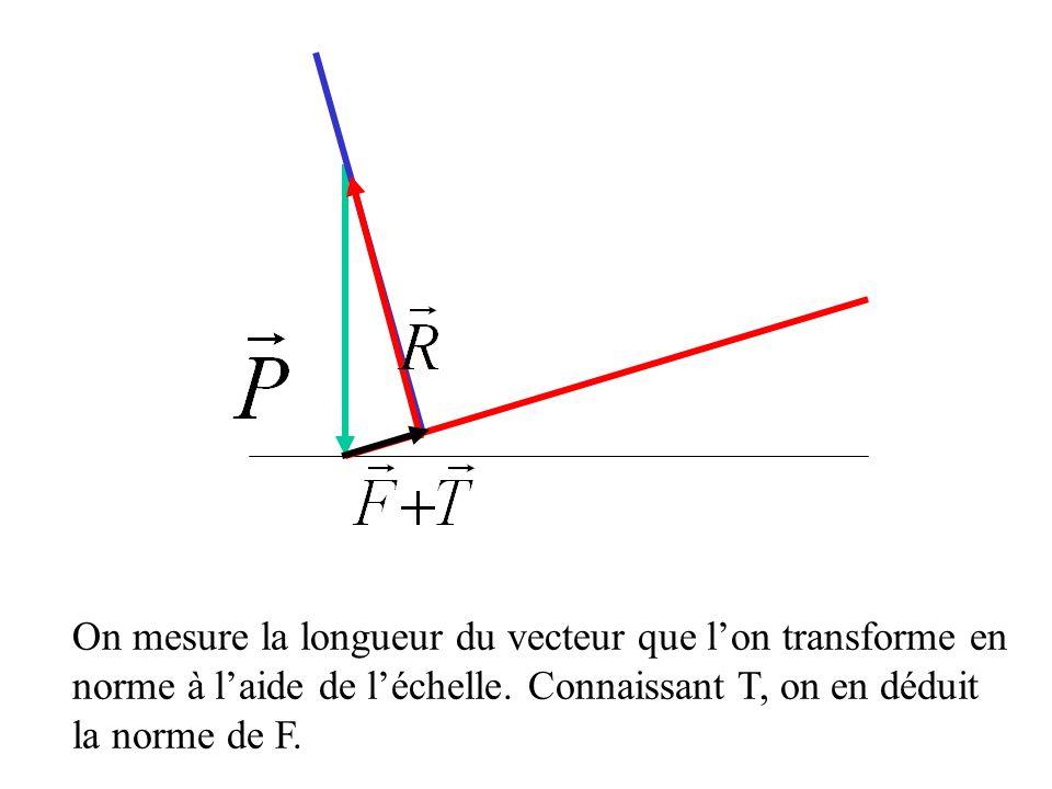 On mesure la longueur du vecteur que l'on transforme en norme à l'aide de l'échelle.