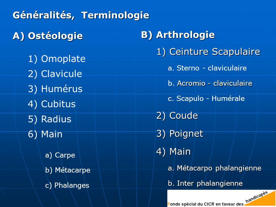 Généralités, Terminologie