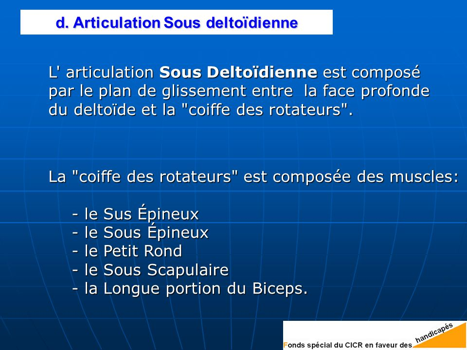 d. Articulation Sous deltoïdienne