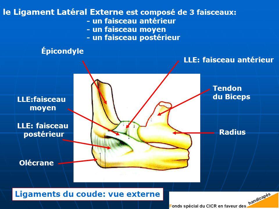le Ligament Latéral Externe est composé de 3 faisceaux: