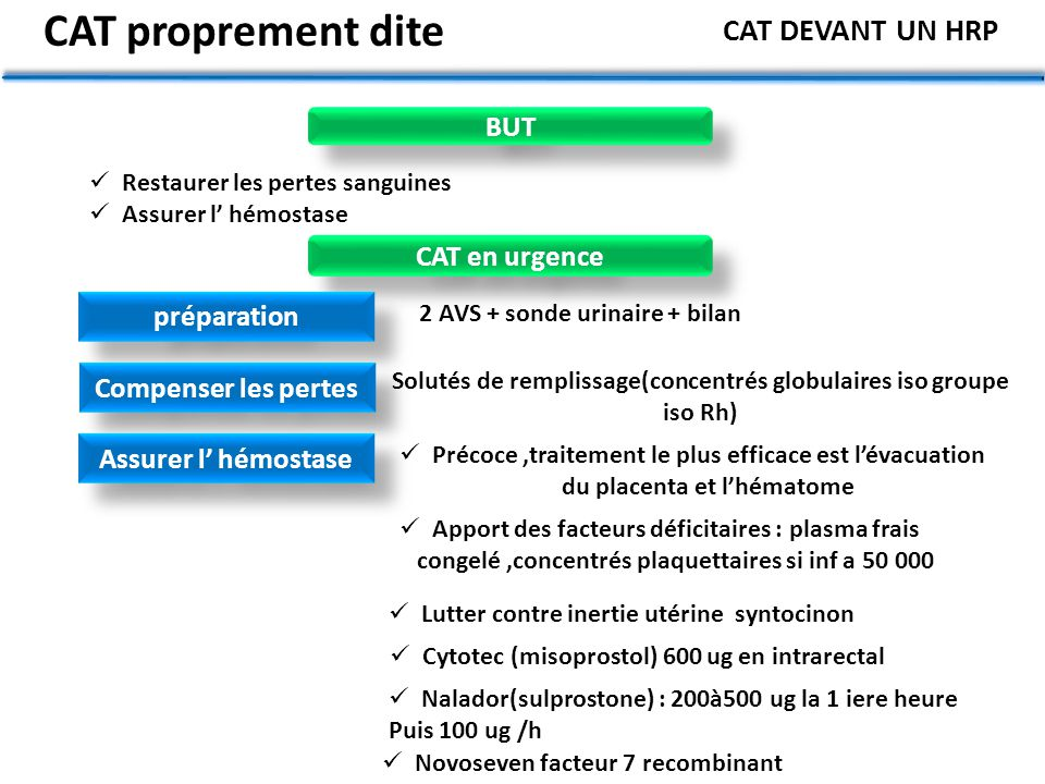 CAT proprement dite CAT DEVANT UN HRP BUT CAT en urgence préparation