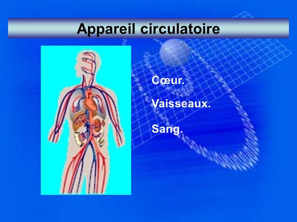 Appareil circulatoire