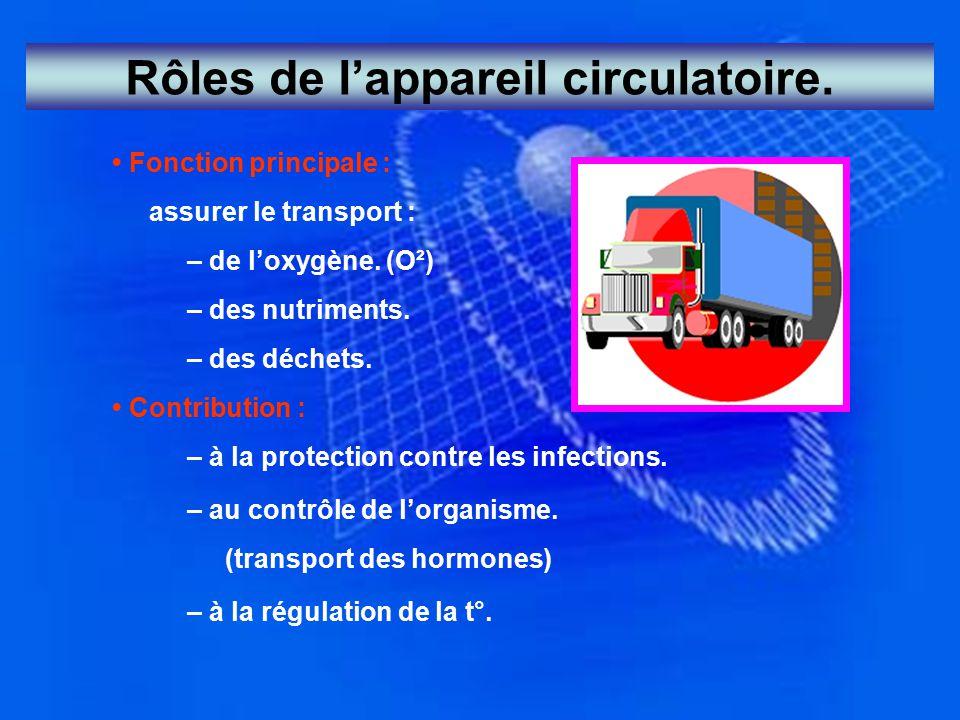 Rôles de l'appareil circulatoire.