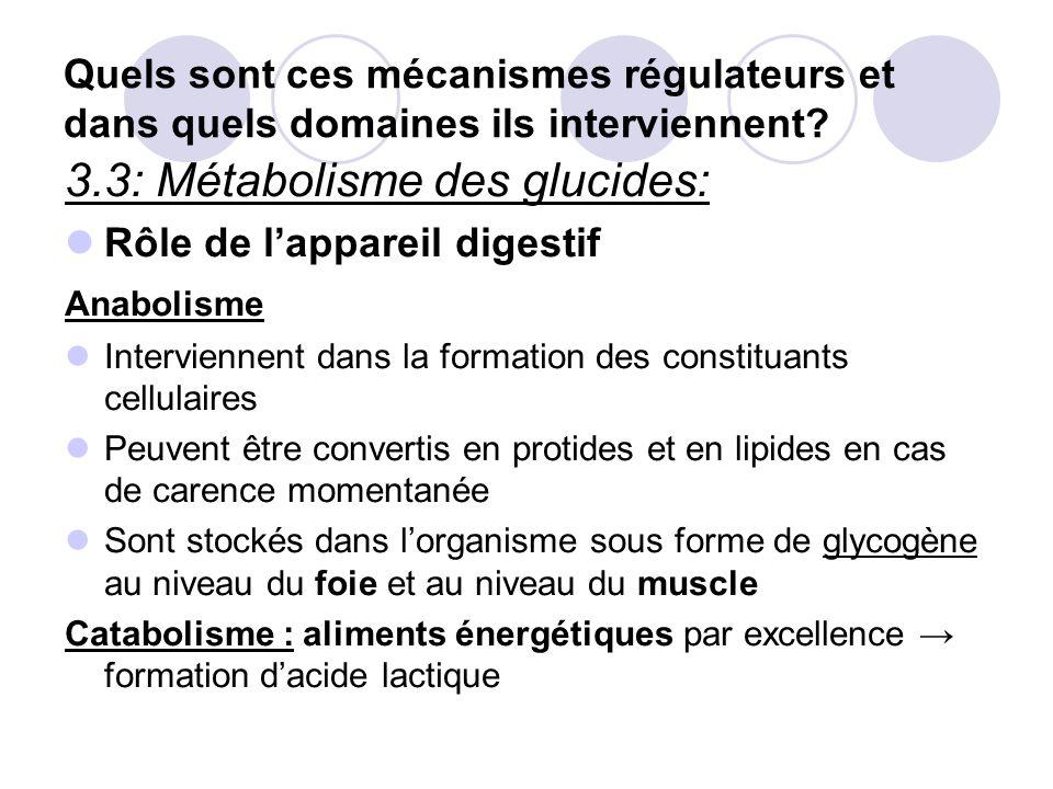 Presentation module endocrinologie ppt t l charger - Quels sont les aliments pauvres en glucides ...