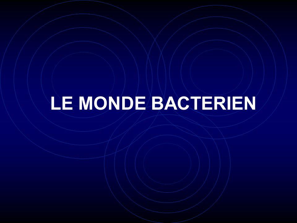 LE MONDE BACTERIEN