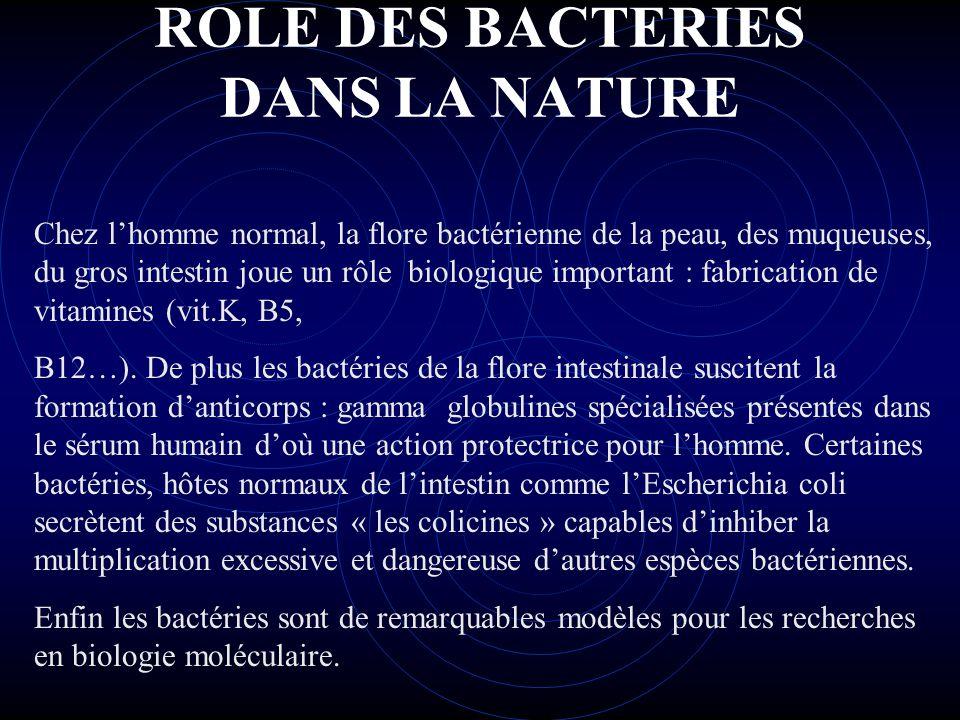 ROLE DES BACTERIES DANS LA NATURE